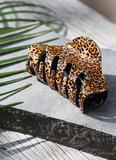 Haarklem luipaard
