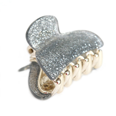 Haarklem small silver sparkle
