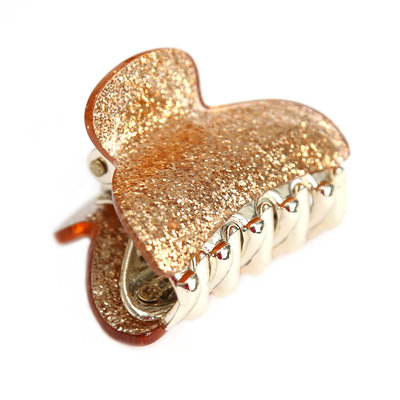 Haarklem small gold sparkle