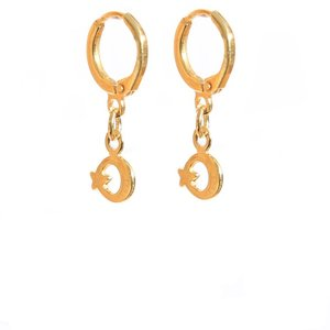 Earrings moon and star gold
